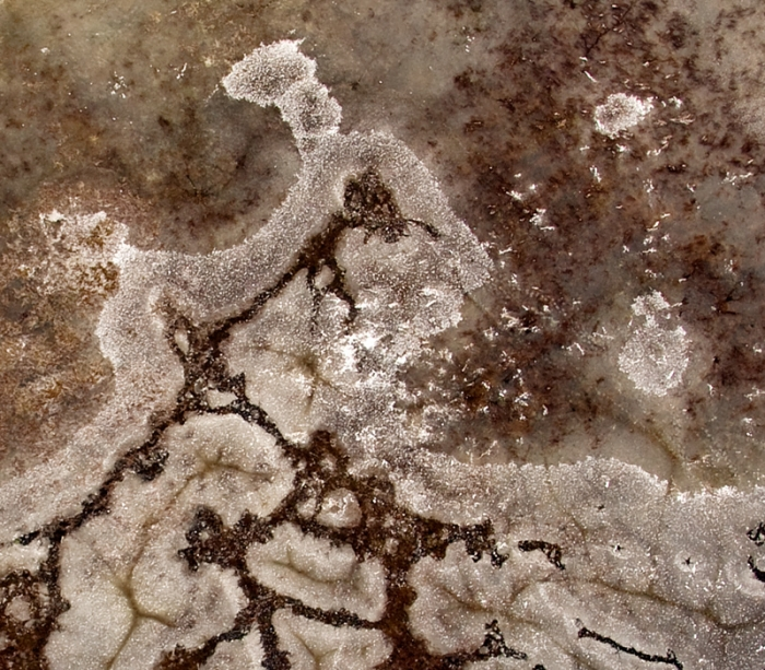 Frozen lake (like aerial Rorschach test)