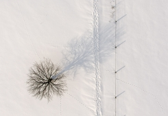 Aerial photography: winter, snow, tree, path ... nice ;)
