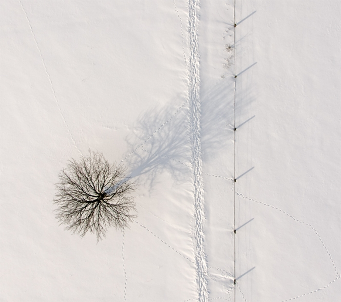 Aerial photography: winter, snow, tree, path ... nice ;)