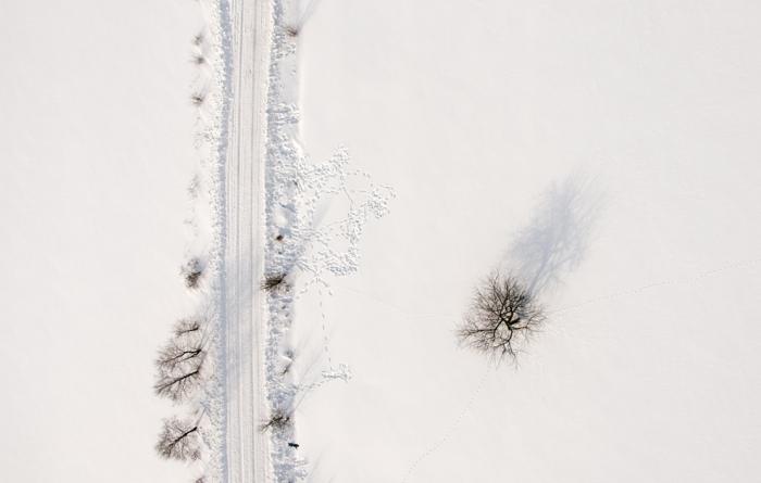 Winter Time .. snow, tree, road ..