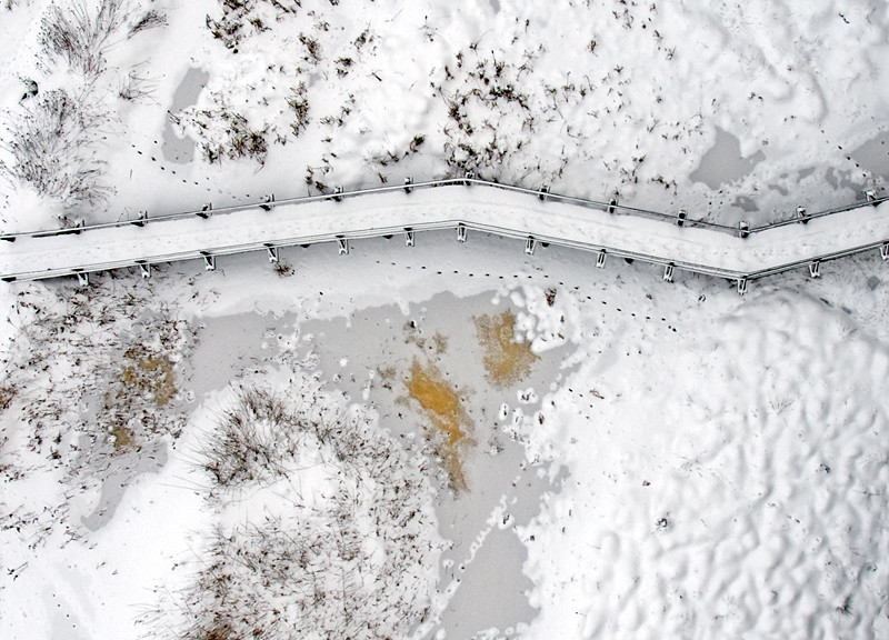 Nature trail winter snow
