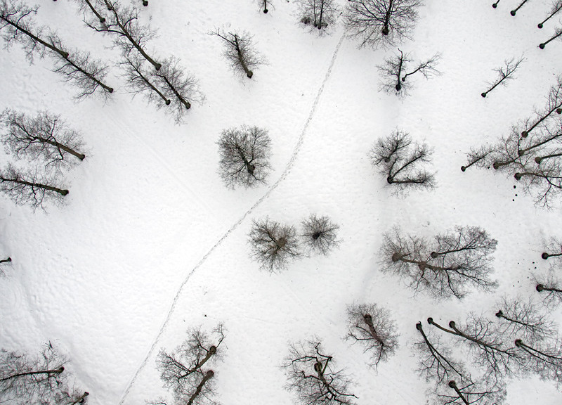 Aerial photography winter snow trees path