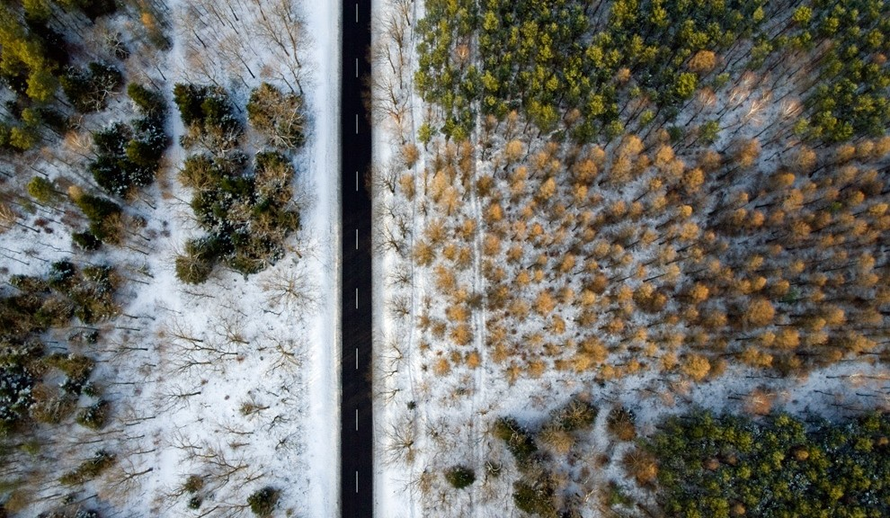 Forest road winter ortho from above